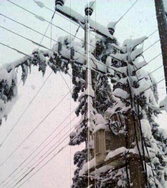رفع مشکل قطع برق در دو منطقه شهرستان آستارا