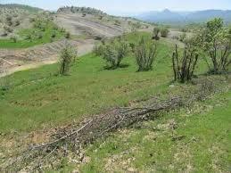 رفع تصرف شخصی 10 هزار متر از اراضی ملی در روستای شیشارستان شهرستان املش