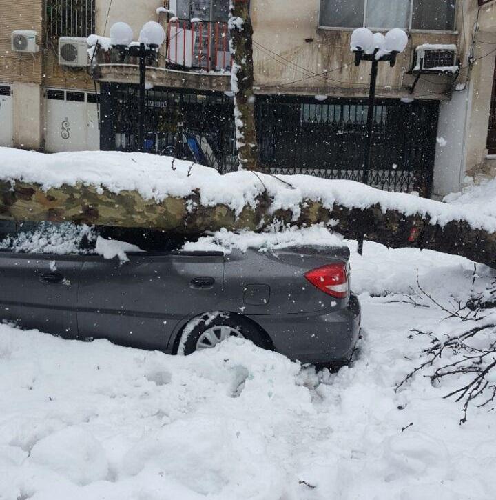 عملکرد برخی از دستگاه ها استان خوب نبود/هنوز هیچ برآوردی از میزان خسارت برف نداریم