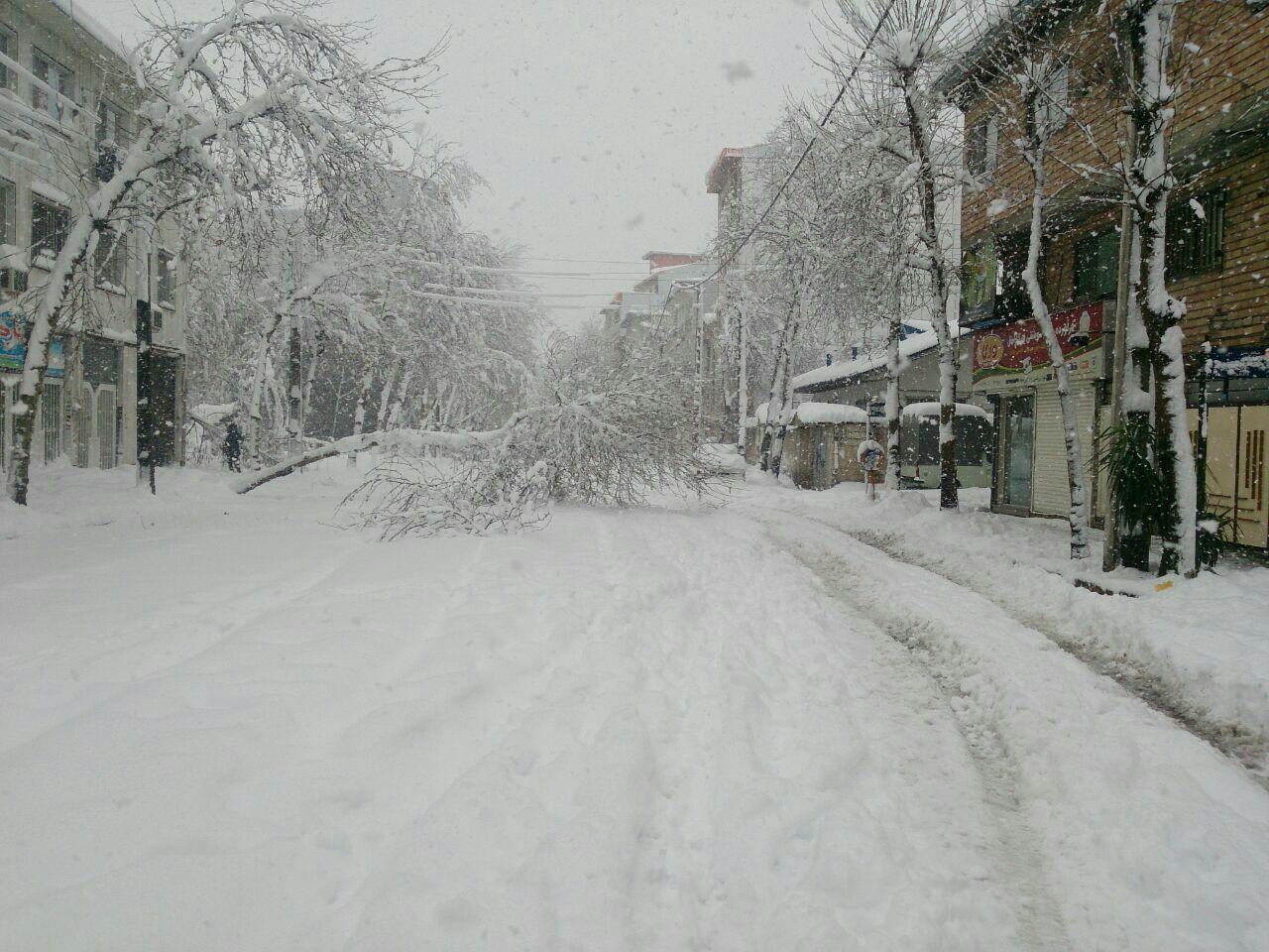 احتمال بارش نیم متری برف در جلگه/بیشترین بارش ها در غرب گیلان است