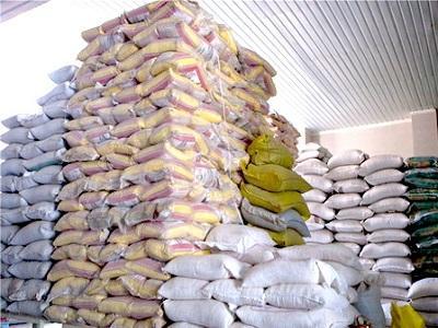 خرید توافقی ۵۷۷ تن برنج از کشاورزان گیلان و مازندران