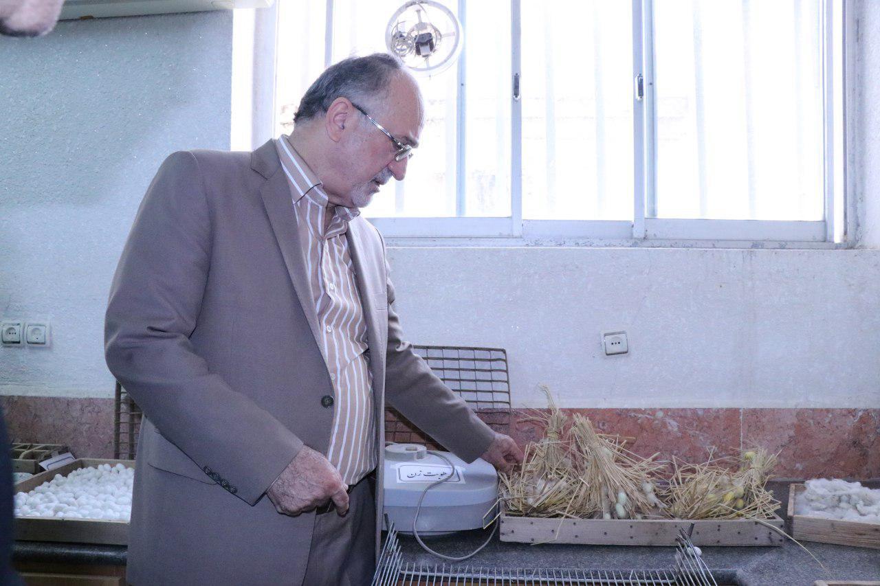 اعلام نیاز بیش از 40 هزار جعبه تخم نوغان از سوی 20 استان کشور/صنعت ابریشم در حال احیا شدن است