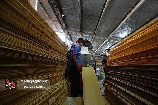 رونمایی از طرح ملی توانمندیسازی تولید و توسعه اشتغال پایدار در گیلان