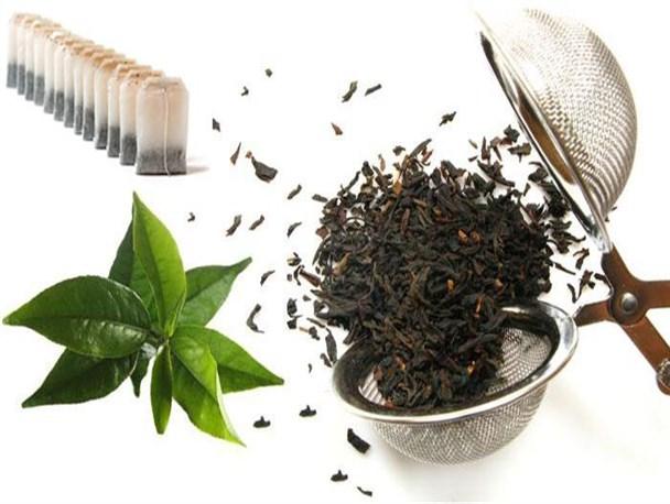 تولید چای خشک ۱۲ درصد افزایش یافت/پیش بینی افزایش ۱۰ هزارتنی چای خشک