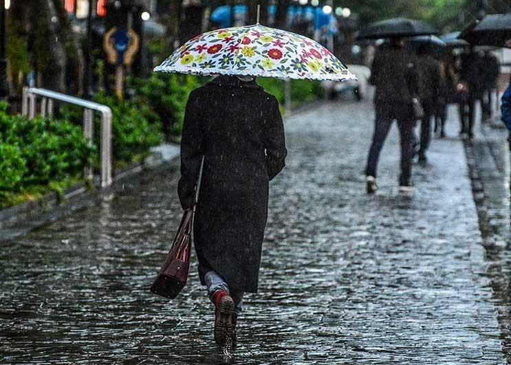 بارش باران و کاهش دما از  دوشنبه در گیلان/کشاورزان مراقب سرمازدگی محصولات خود باشند
