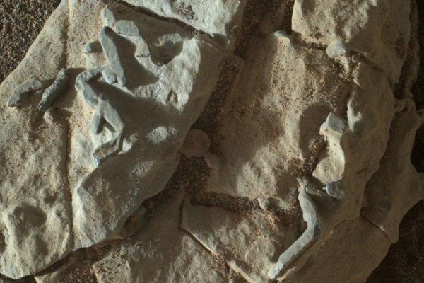 کشف فسیل در مریخ!/وجود حیات در فضا قوت گرفت