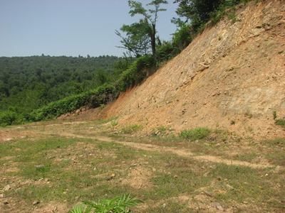 محکومیت متصرف محیط زیست در گشت رودخان فومن