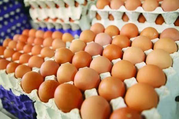 كشف هزارو 900 كيلوگرم تخم مرغ فاسد در آستارا