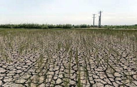 منابع آب شرب و کشاورزی سیاهکل مدیریت شود/لزوم رسیدگی به کم آبی در مزارع روستای چالشم