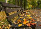 چرا در پاییز غمگین می شویم؟/برای رفع افسردگی پاییزی چه باید کرد؟