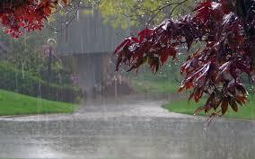 بارانی بودن هوای گیلان تا اواسط هفته