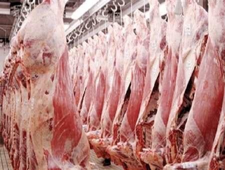 تولید ۲۶ هزار تن گوشت قرمز در گیلان