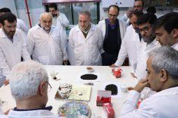 گزارش تصویری نشست همکاری نیروهای مسلح و سازمان چای جهت حمایت از تولید چای ایرانی