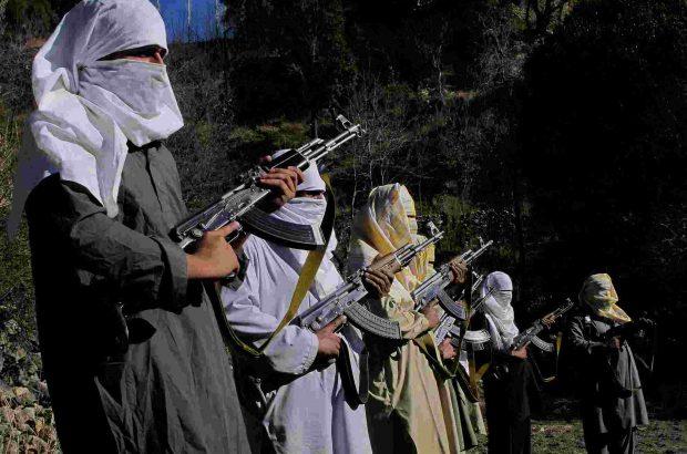 چرا مذاکره با تروریست های طالبان بیهوده است؟