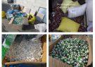 انهدام باند تهیه و توزیع مواد محترقه در آستارا