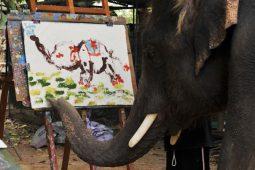 گزارش تصویری نمایشگاه عجیب نقاشی حیوانات