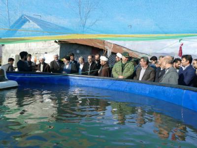 طرح پرورش ماهی روستای گرمه سر به بهره برداری رسید