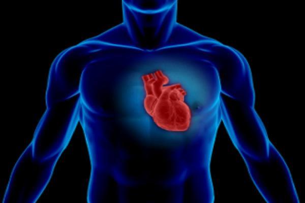 نخستین کلینیک تخصصی پرستاری قلب گیلان افتتاح شد