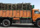 کشف 11 تن چوب جنگلی قاچاق در سیاهکل/دو متهم میانسال دستگیر شدند