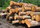 باید از برداشت بیرویه جنگل و قطع درختان و قاچاق آن جلوگیری شود