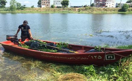 عملیات آتش نشانی برای مهار سنبل آبی در تالاب عینک رشت
