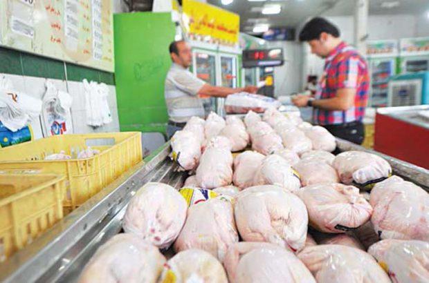 جهاد کشاورزی و صمت مسئول کمبود مرغ در استان گیلان