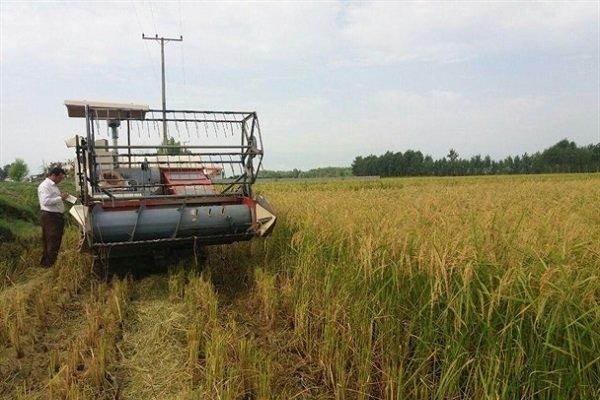 تخصیص ۷۴۰ میلیاردی برای تجهیز ناوگان ماشینی بخش کشاورزی گیلان