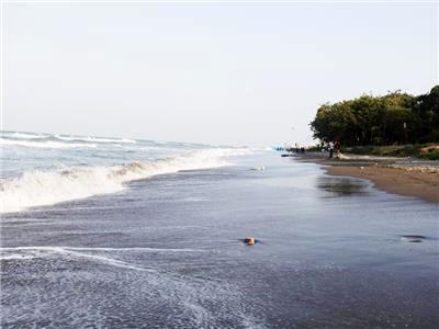 پاکسازی ساحل به جای زندان برای مجرم