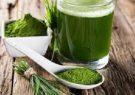 نوشیدنی انرژی زا ایرانی از جلبک تولید شد