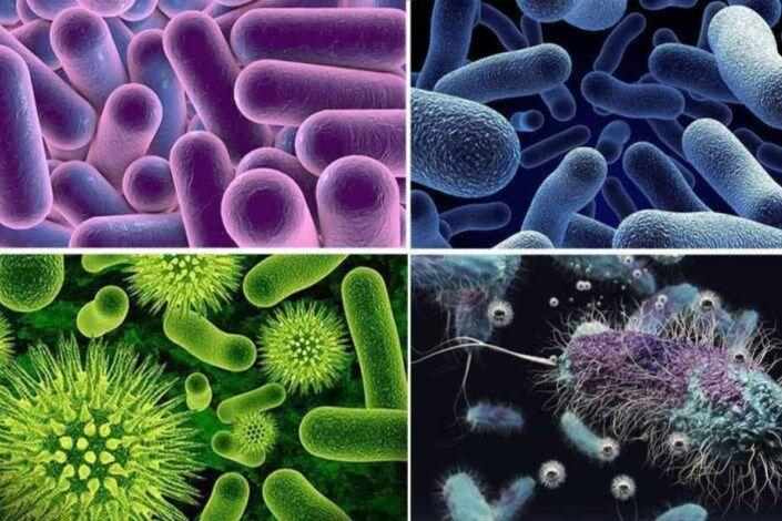 شناسایی سطوح آلوده میکروبی با نانو حسگر رنگی ایرانی