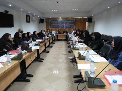 برگزاری کارگاه آموزشی منطقه ای بهبود کیفیت مراقبت ها و پیامدها در گیلان