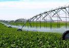 اجرای آبیاری نوین در ۱۳ هزار و ۶۳۲هکتار از اراضی کشاورزی گیلان