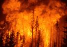 آتش سوزی در حدود ۵۰ هکتار از جنگل های گیلان/وقوع حریق مجدد پس از اطفاء در برخی از نقاط