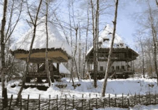 ۷۰ درصد فضاهای جانبی ابنیه موزه میراث روستایی گیلان تخریب شده است