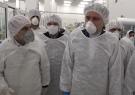 از همه ظرفیتهای گیلان برای تولید کالاهای بهداشتی استفاده شده است/تولید ۸۰۰ هزار تیوپ مواد ضد عفونی کننده در گیلان