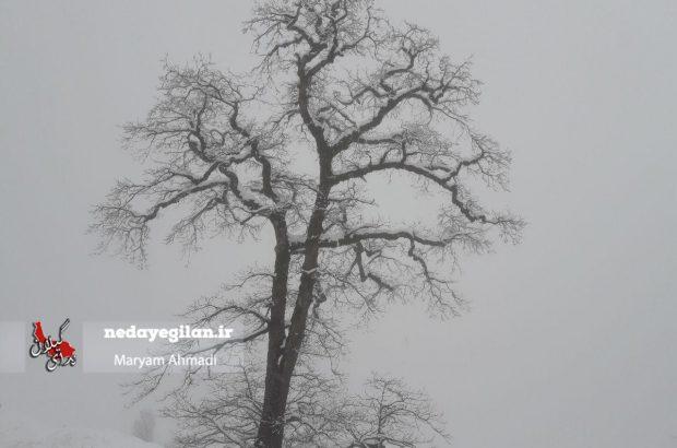 ورود سامانه بارشی از شب چهارشنبه/بارش برف شدید در مناطق  کوهستانی