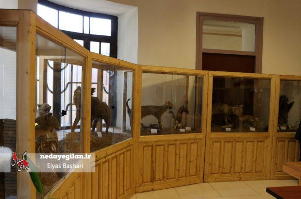 موزه رشت به موزه باستانشناسی تبدیل می شود/مرمت خانه موزه مشروطه رشت به زودی پایان می یابد
