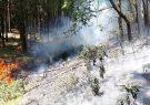 گسترش آتش سوزی به ۱۵ هکتار از اراضی جنگلی ماسال/آتش سوزی تحت کنترل است