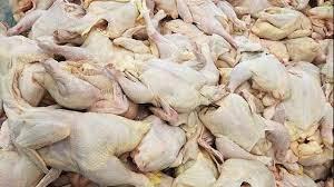 توقیف خودوری حامل ۱۱ تن ضایعات مرغ فاسد در آستارا